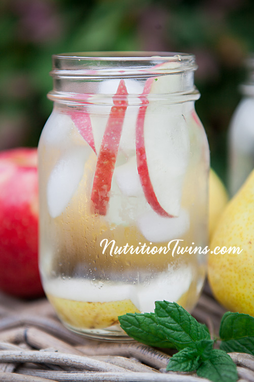 0002_NutritionTwins-apple-pear-infusedwater-spearmint-applecidervinegar-detox-spawater_logo