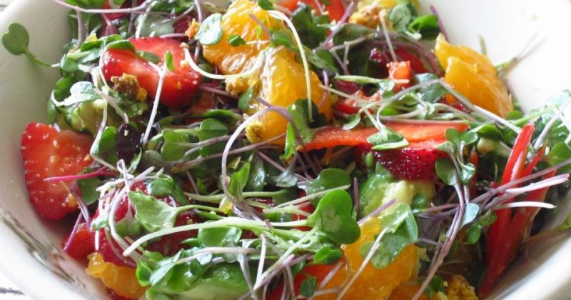Strawberry And Citrus Salad With Avocado And A Weight Loss Tip To Eat Less At Meals Nutrition Twins
