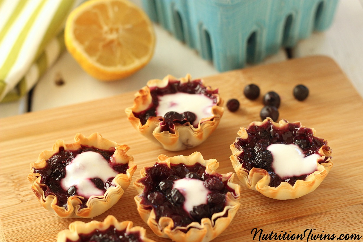 Wild_blueberry_tart_yogurt_horiz_logo